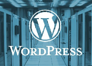 Managed WordPress Hosting uitgelegd!